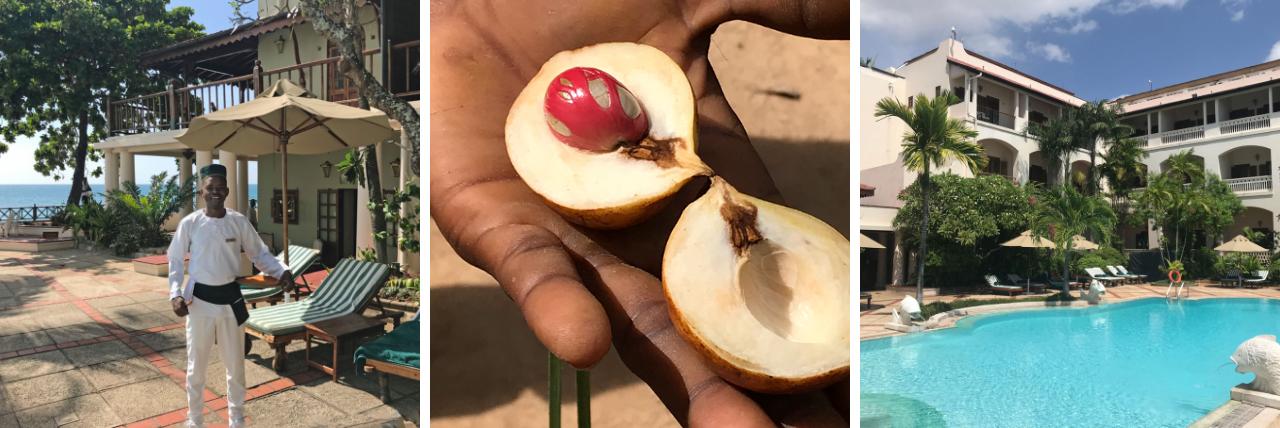 Der Geschmack von Sansibar tansania strand sonne reisebericht new honeymoon 2  tui sansibar stone town serena