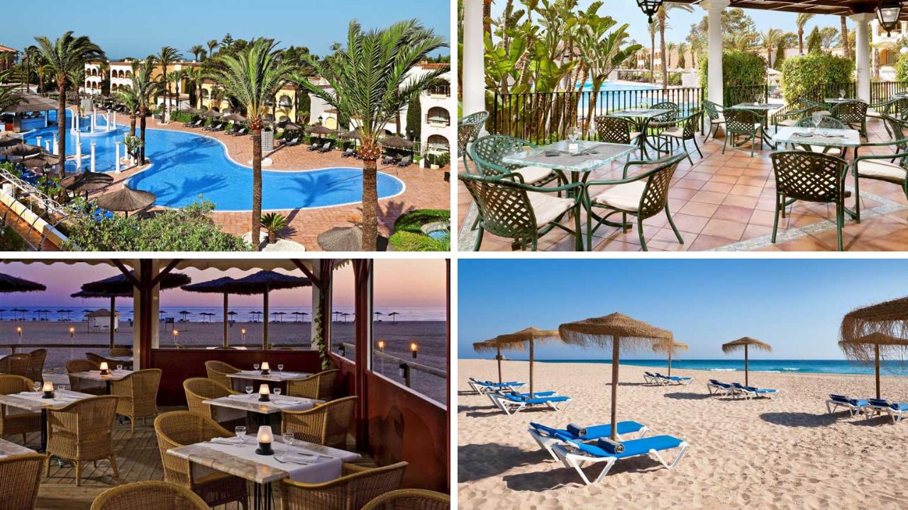 TUI Tipp der Woche   Melia Hotels sonne news kanaren angebote und specials angebot aegypten  tui berlin melia atlanterra canva