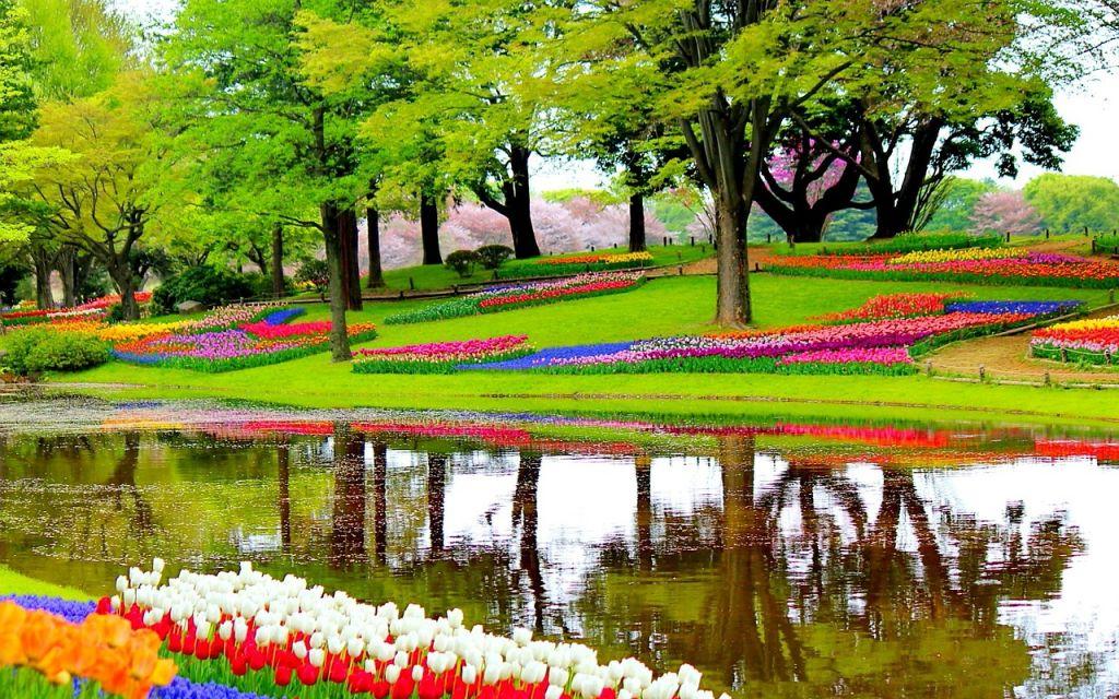 Blumengarten Niederlande