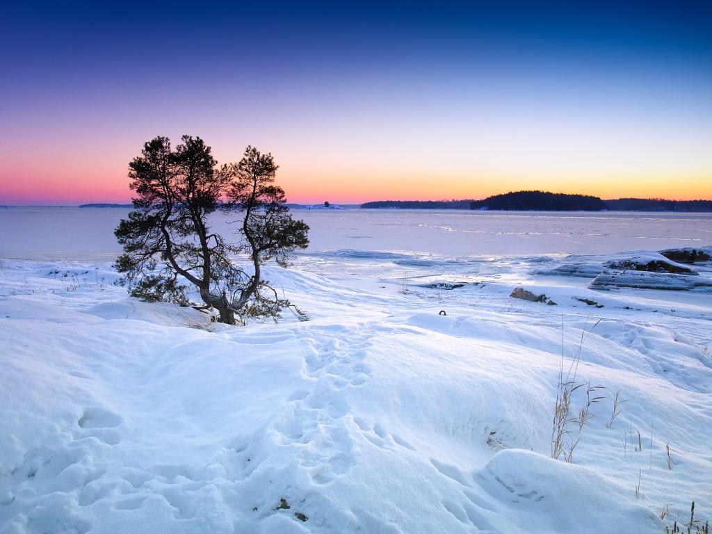 verschneite Landschaaft in Lappland