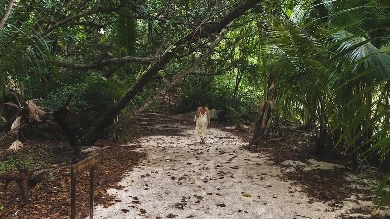 Vallée de Mai auf den Seychellen