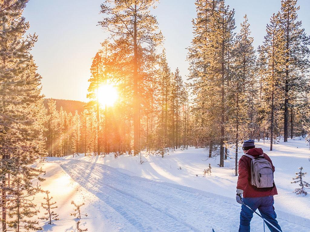 Ski-Wanderung durch einen verschneiten Wald