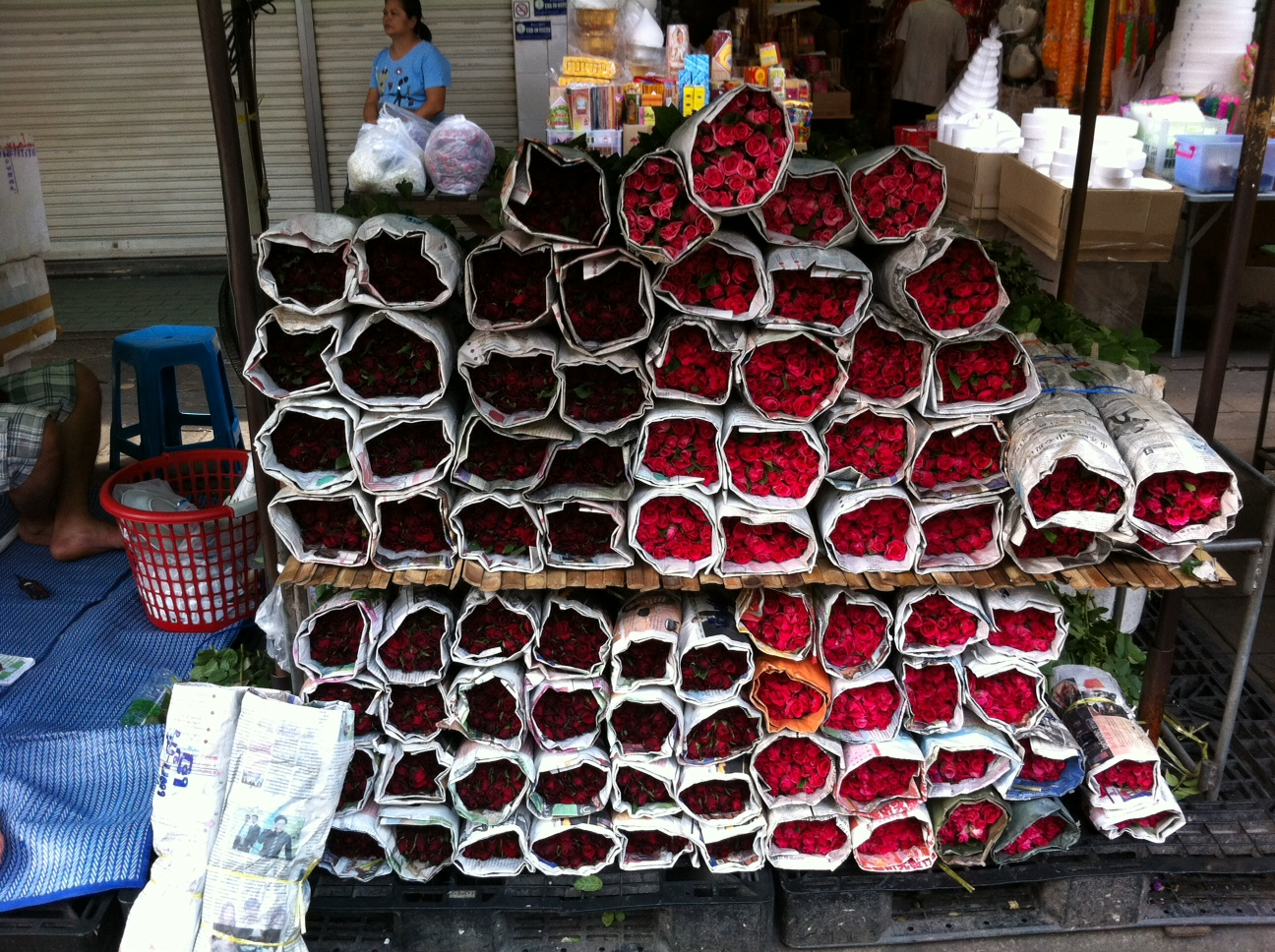 Bangkok und Chiang Mai thailand asien  Blumen