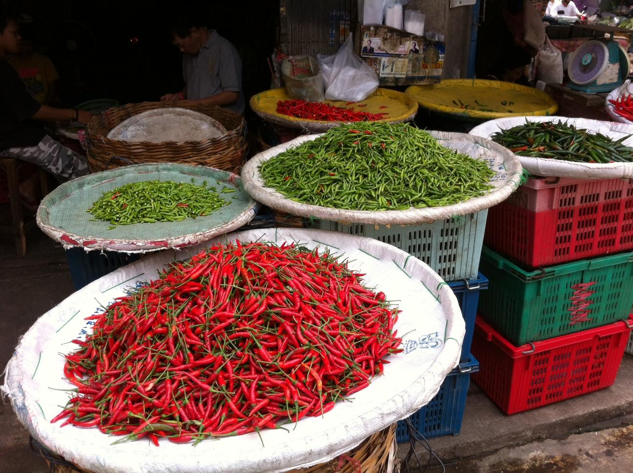 Bangkok und Chiang Mai thailand asien  Chilli