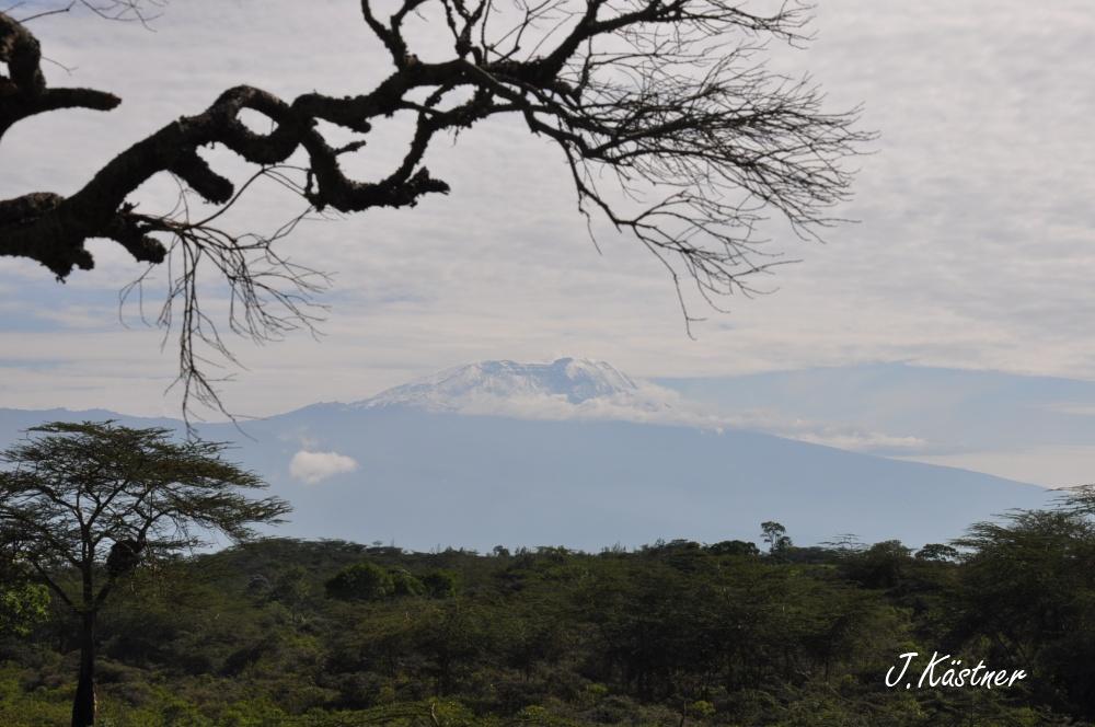 World of TUI persönlich. Tansania erleben! tansania sonne safari afrika  DSC 8132