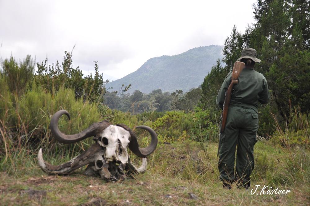 World of TUI persönlich. Tansania erleben! tansania sonne safari afrika  DSC 8174