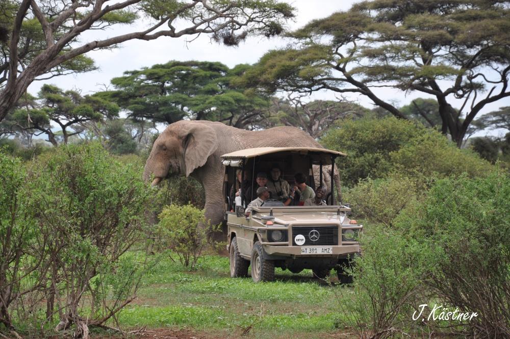 World of TUI persönlich. Tansania erleben! tansania sonne safari afrika  DSC 8534