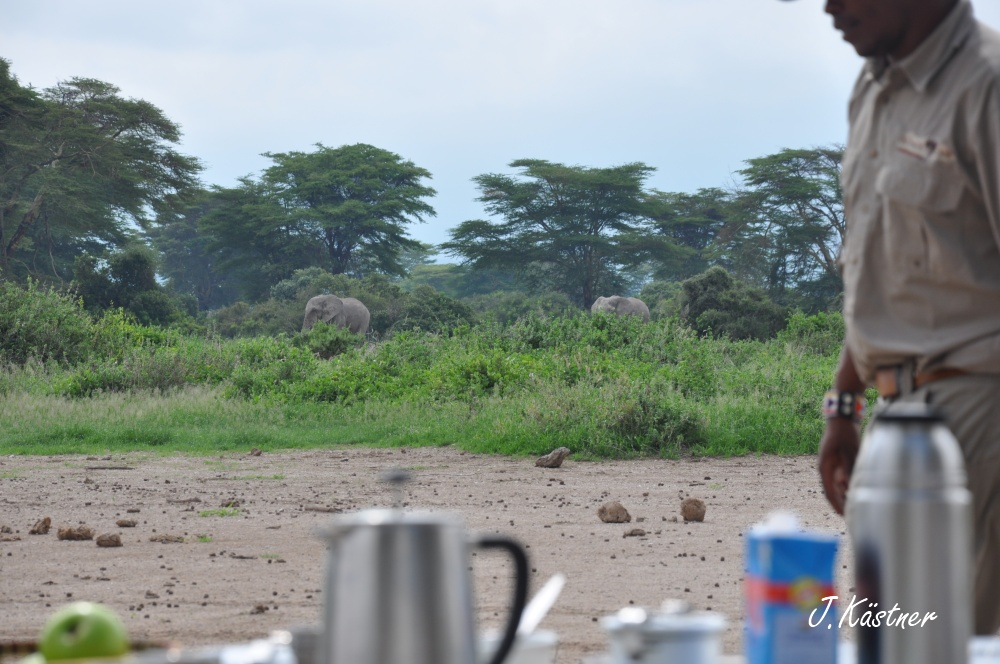 World of TUI persönlich. Tansania erleben! tansania sonne safari afrika  DSC 8633