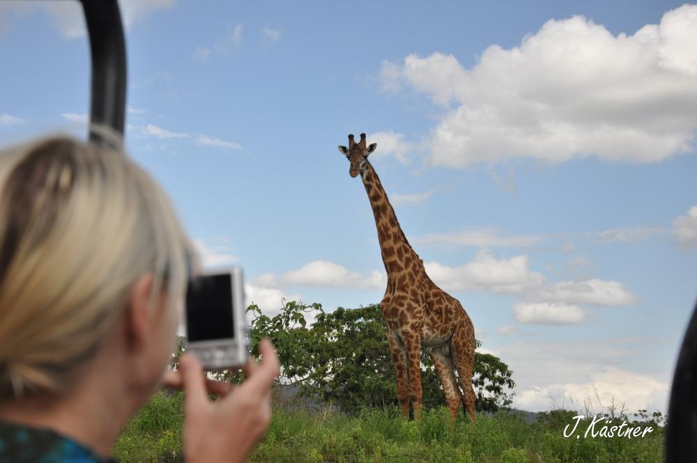 World of TUI persönlich. Tansania erleben! tansania sonne safari afrika  DSC 8948