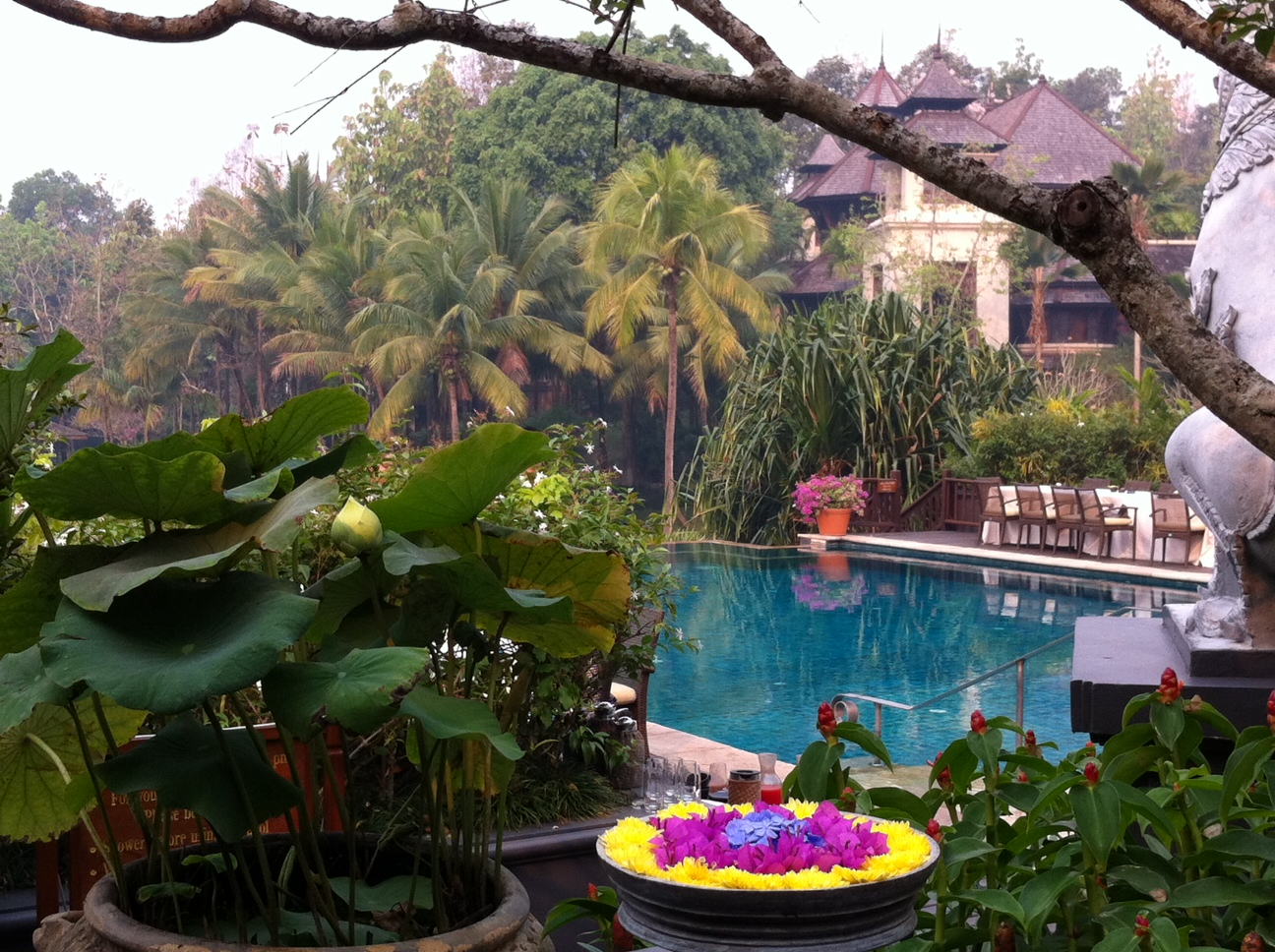 Bangkok und Chiang Mai thailand asien  Four Seasons Pool2
