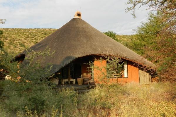 Rainbow Nation Südafrika suedafrika staedtereisen sonne safari afrika  Lodge