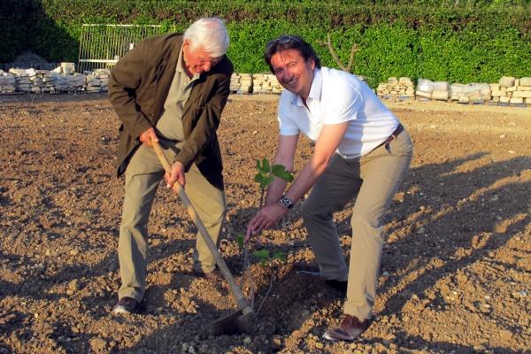 Viverde Hotel Tenuta Moreno, Apulien   Natur aktiv und bewusst erleben. staedtereisen europa  Olivenbaumpflanzen 3