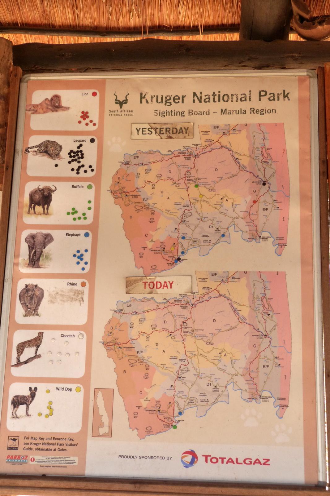 Südafrika und Swasiland Overland. suedafrika staedtereisen sonne safari afrika  P1090494