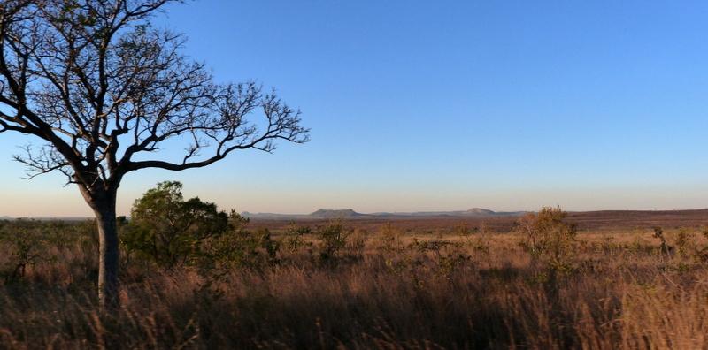 Südafrika und Swasiland Overland. suedafrika staedtereisen sonne safari afrika  P1090806