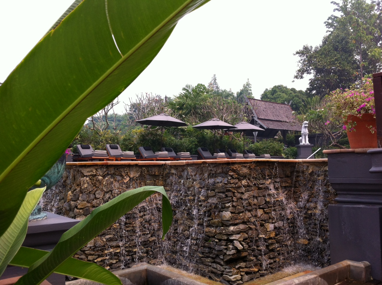 Bangkok und Chiang Mai thailand asien  Pool Four Seasons