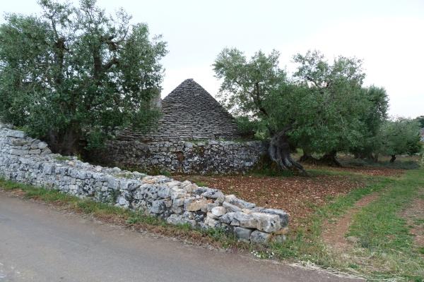 Viverde Hotel Tenuta Moreno, Apulien   Natur aktiv und bewusst erleben. staedtereisen europa  Trulli im Olivenheim