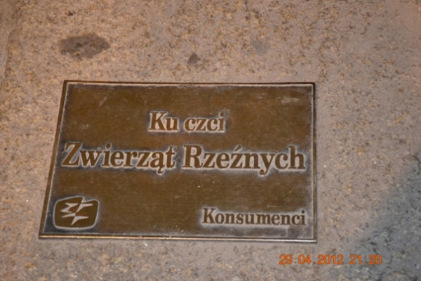 Breslau. Ein Städtetrip zur Blume Europas europa  WarschauBlog7
